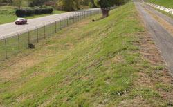 Storing ash safely environmental protection for Design of ash pond